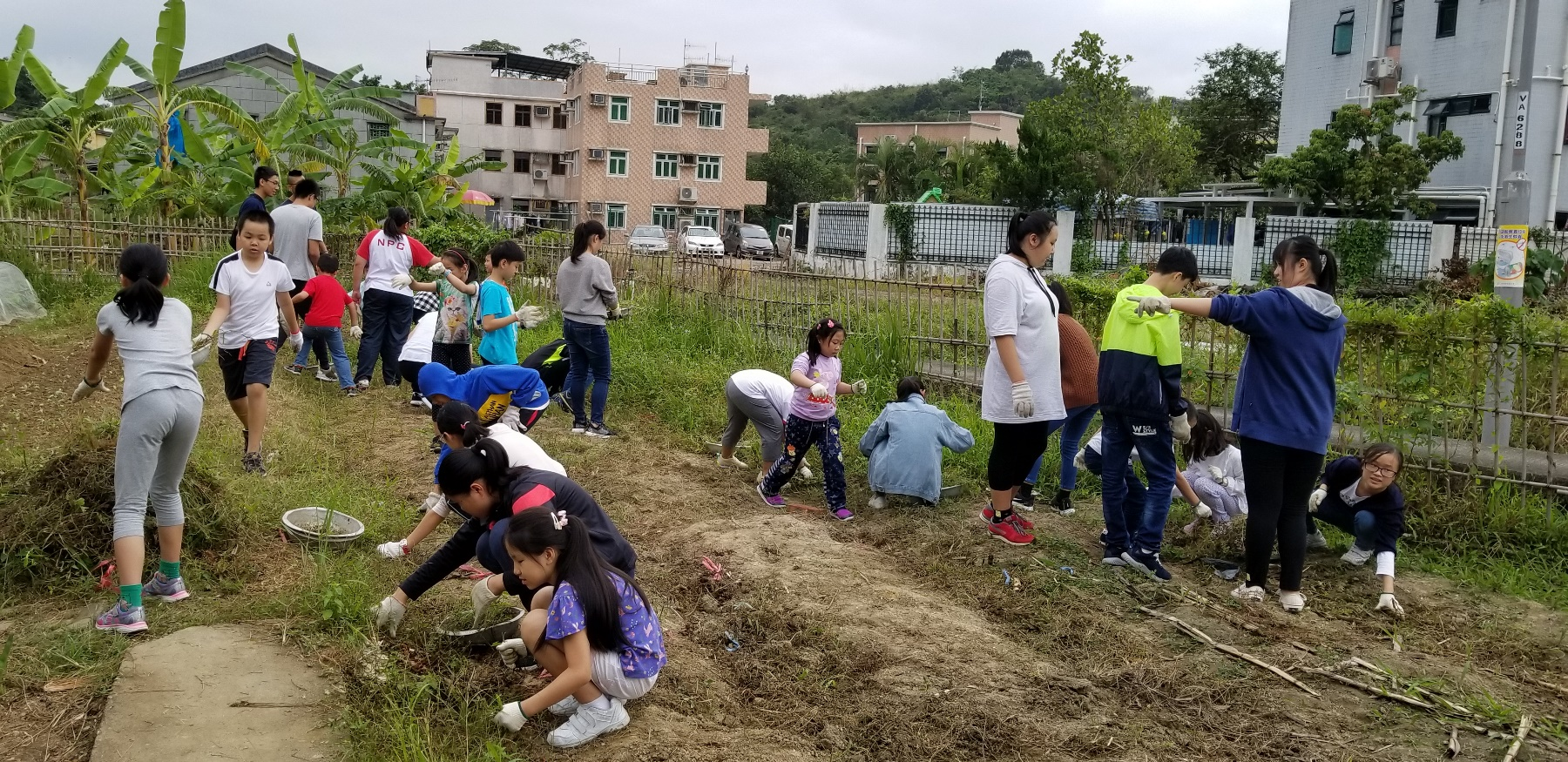 http://npc.edu.hk/sites/default/files/20181104_114929.jpg